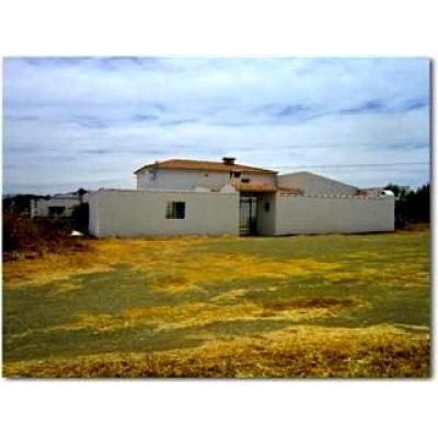 Inmobiliaria Inmobiliaria Casa en venta en Villanueva De Tapia, Málaga