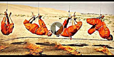 Portada  ISIS: Cinco macabras ejecuciones de los yihadistas islámicos