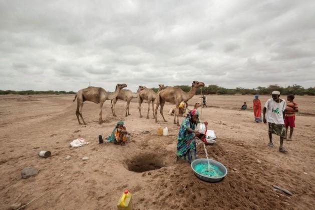 Portada  Falta de agua preocupa a Medio Oriente y Magreb