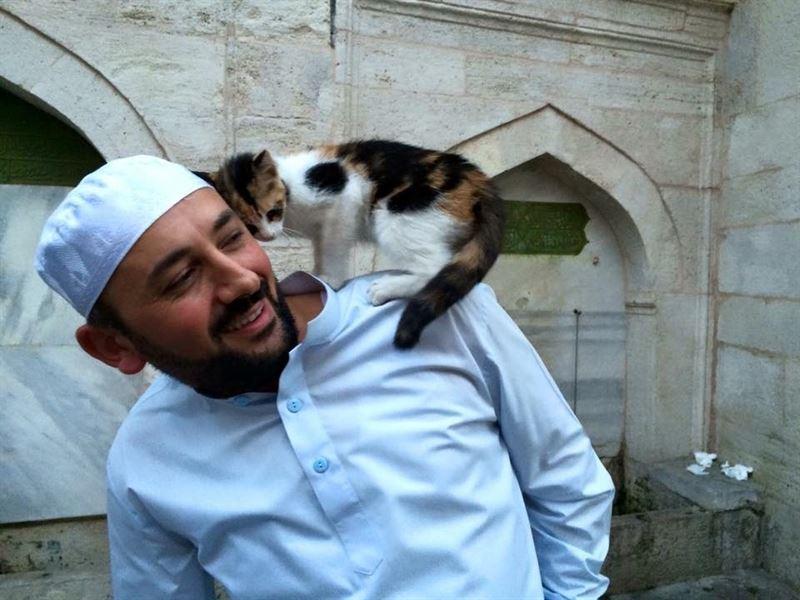 Portada  Una mezquita de Estambul abre sus puertas y da calor a gatos callejeros